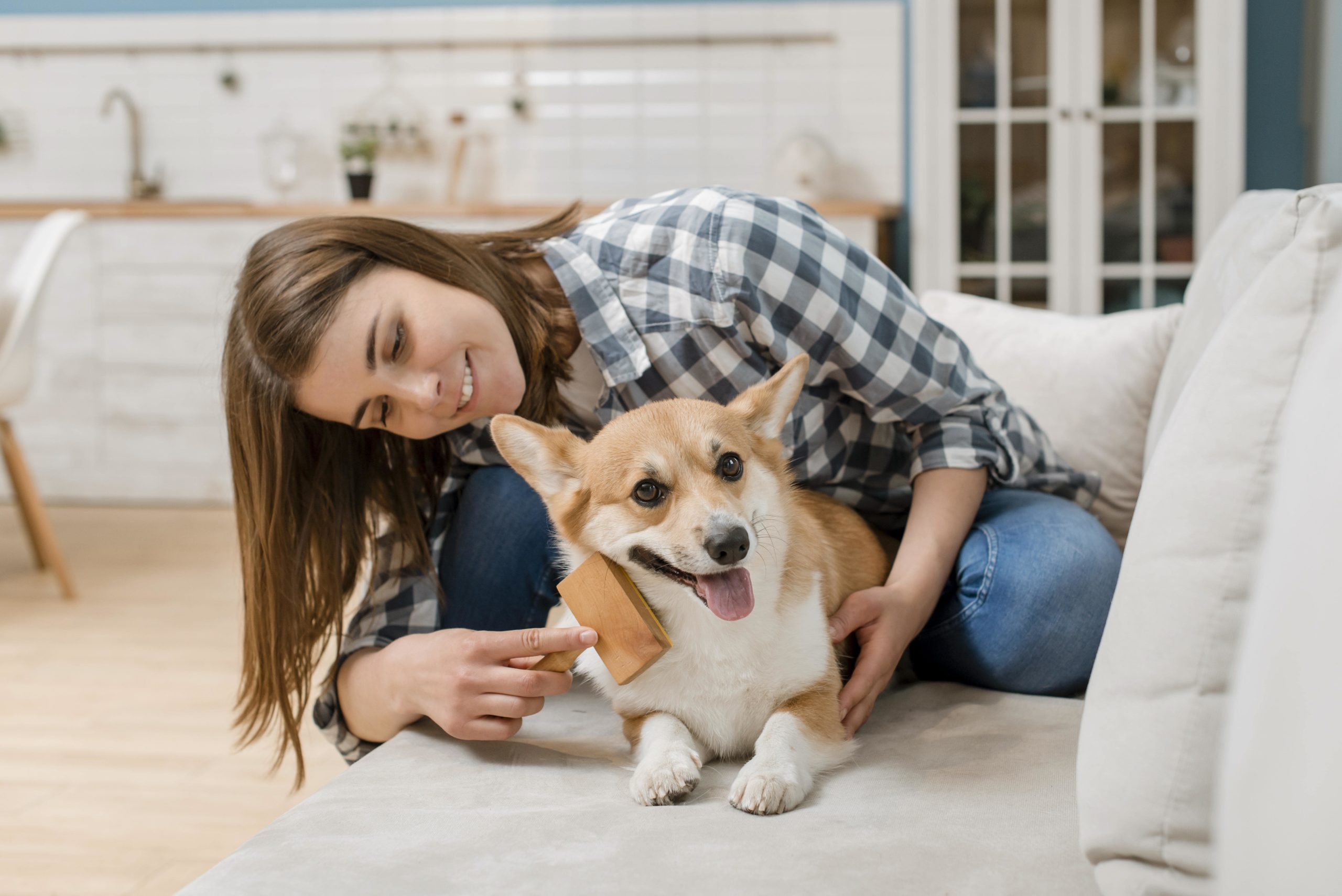 Cepillo para perros