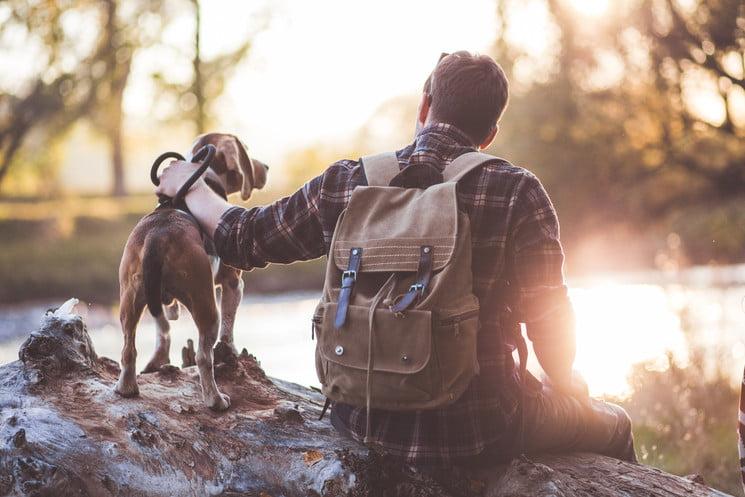 planes y rutas para disfrutar con tu perro