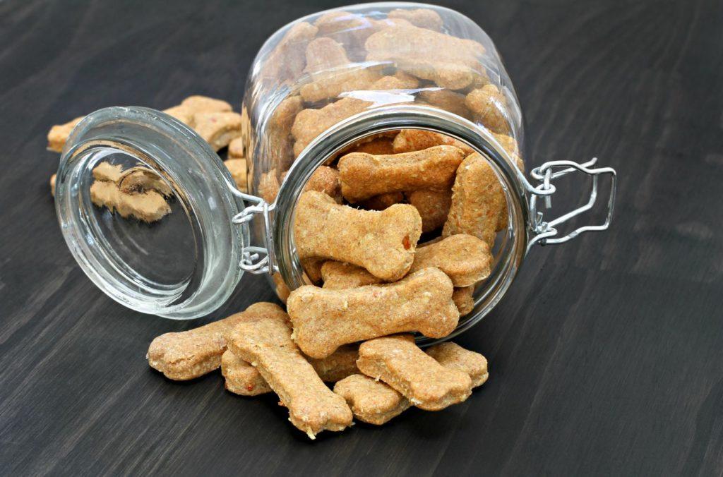 scooby galletas para ti y tu mascota