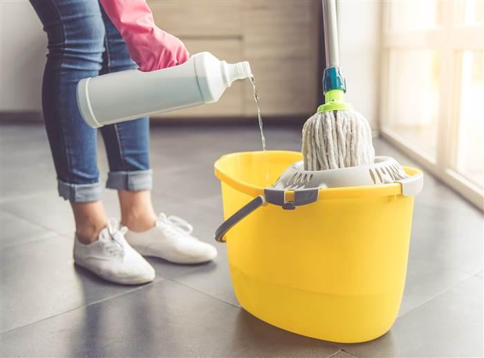 limpiar pis perro en casa