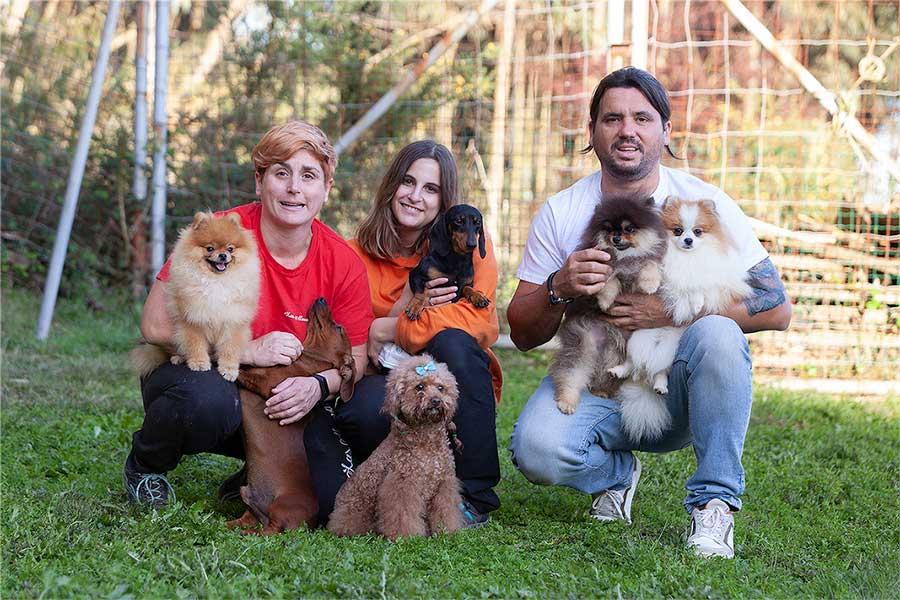 razas de perro pequeñas y tranquilas