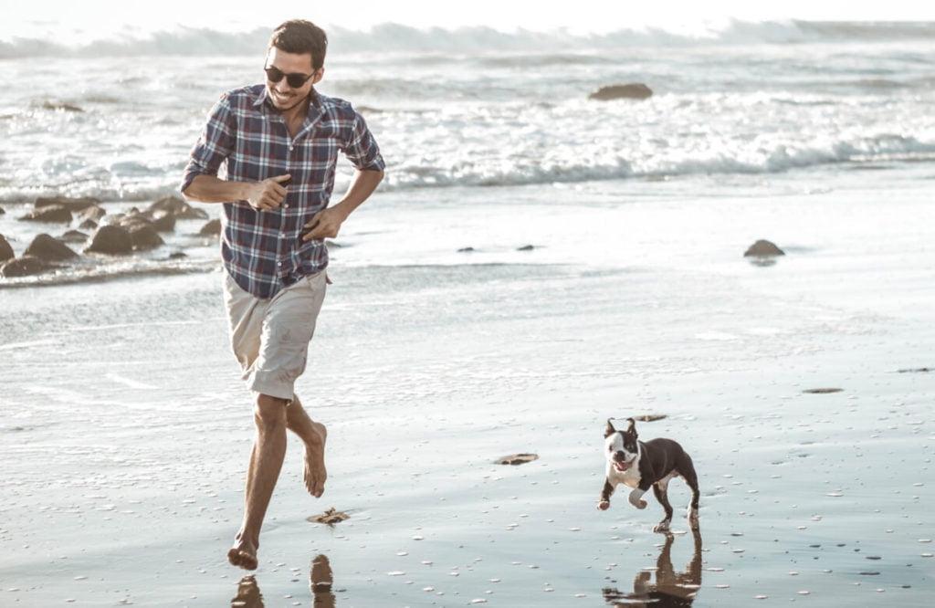 jugar playa perro