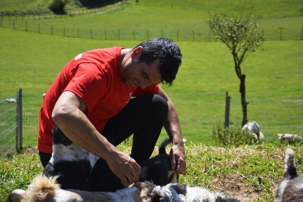 residencia canina Asturias