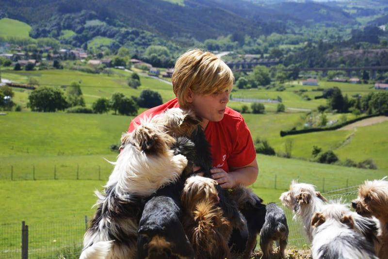 vacaciones perros Asturias