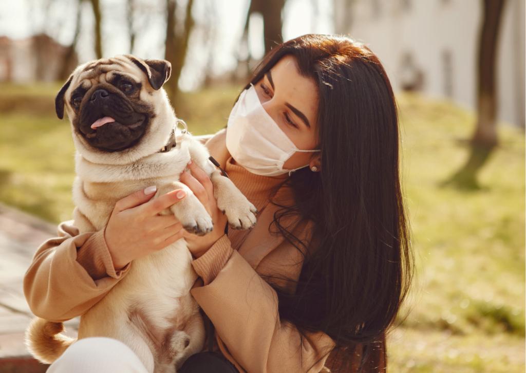 prevención del coronavirus en perros