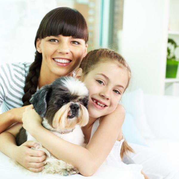 beneficios terapia perros