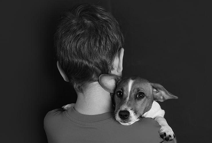 tratamiento autismo con perros