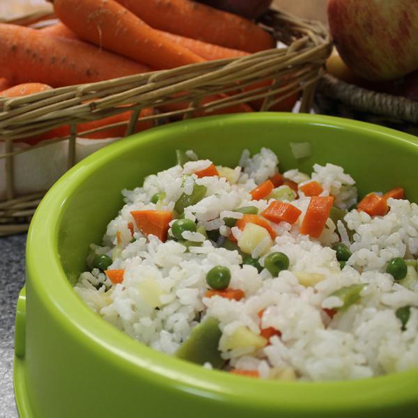 dieta-perros-verdura