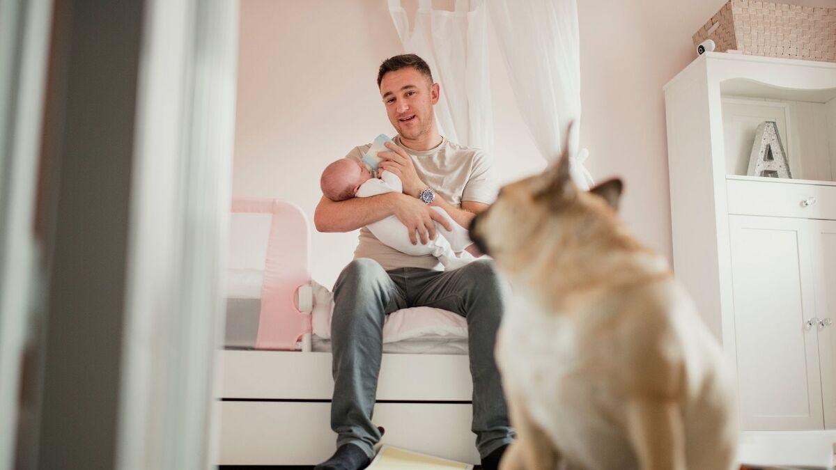 perro celos bebé