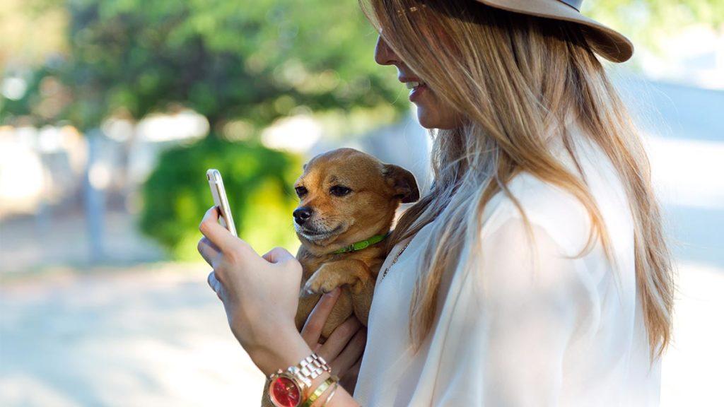 apps para perros
